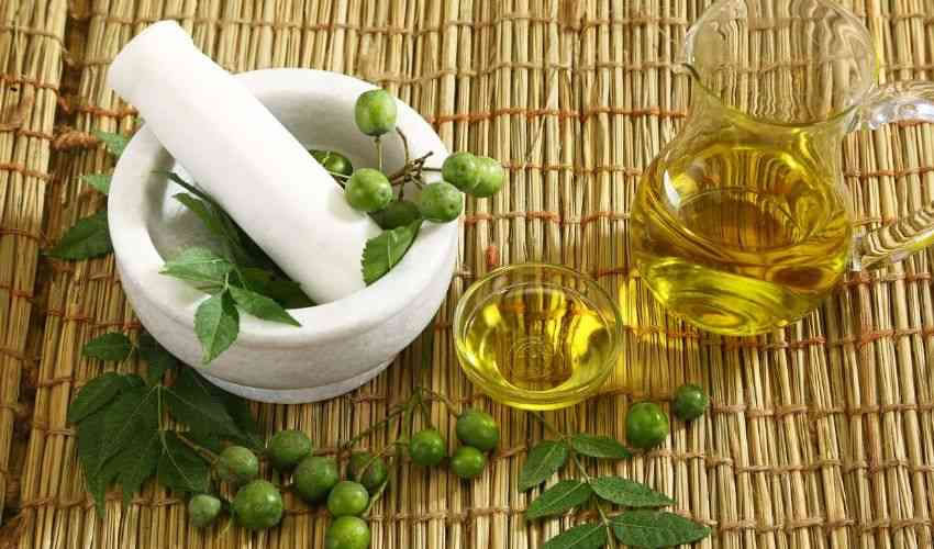 olio neem rimedi naturale zanzare